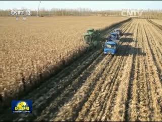 农业部:三权分置是农村改革一重大制度创新