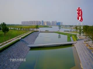 宁波杭州湾新区:未来远远大于想象